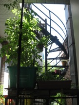 balconyGardens