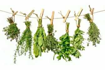 Dry-Herbs